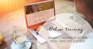 Online training minder stress in zes weken