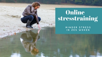 online training minder stress in zes weken
