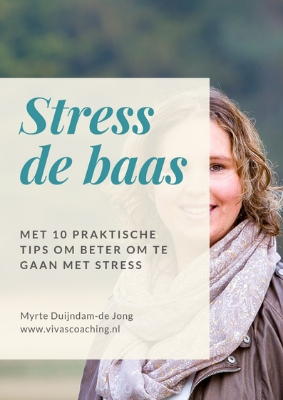 Downlooad het gratis Ebook Stress de Baas