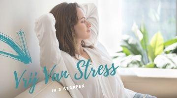 Online training Vrij van Stress
